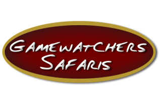 gamewatchers_logo